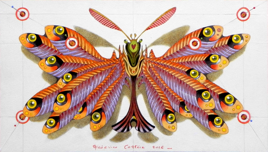 anchovies butterfly (sold)