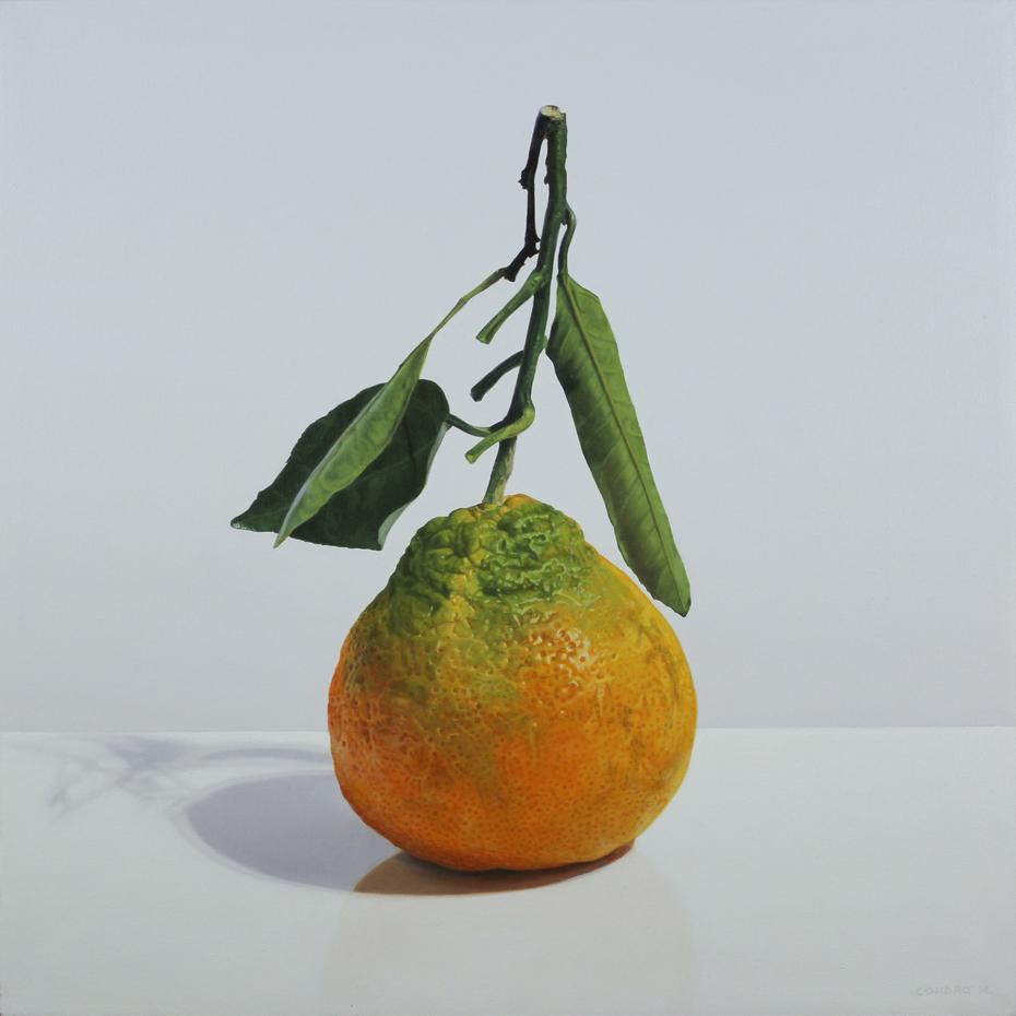Citrus Reticulata, fructus