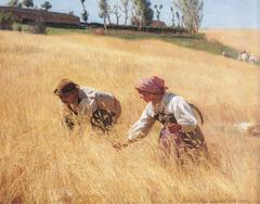 Civita d'Antino. Harvest.