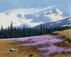 Crocuses with Snowy Mountains Behind