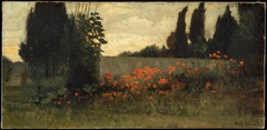 Cypress and Poppies
