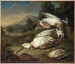 Dead Game in a Landscape: Two White Woodcocks and Two Other Birds