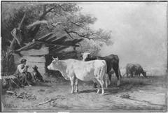 Kühe am Starnberger See
