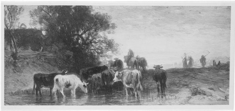 Kühe an der Tränke