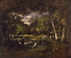 The Pond at Fontainebleau