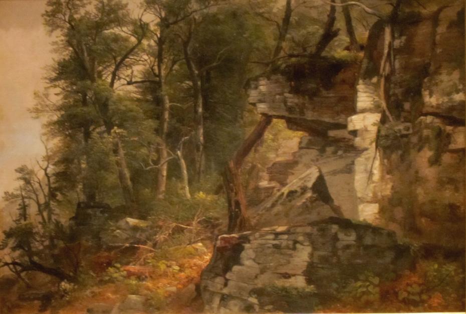 Trees on a Rocky Hillside