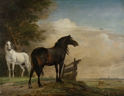 Two Horses in a Meadow near a Gate