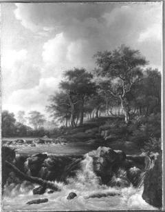 Wildbach (Nachfolger)