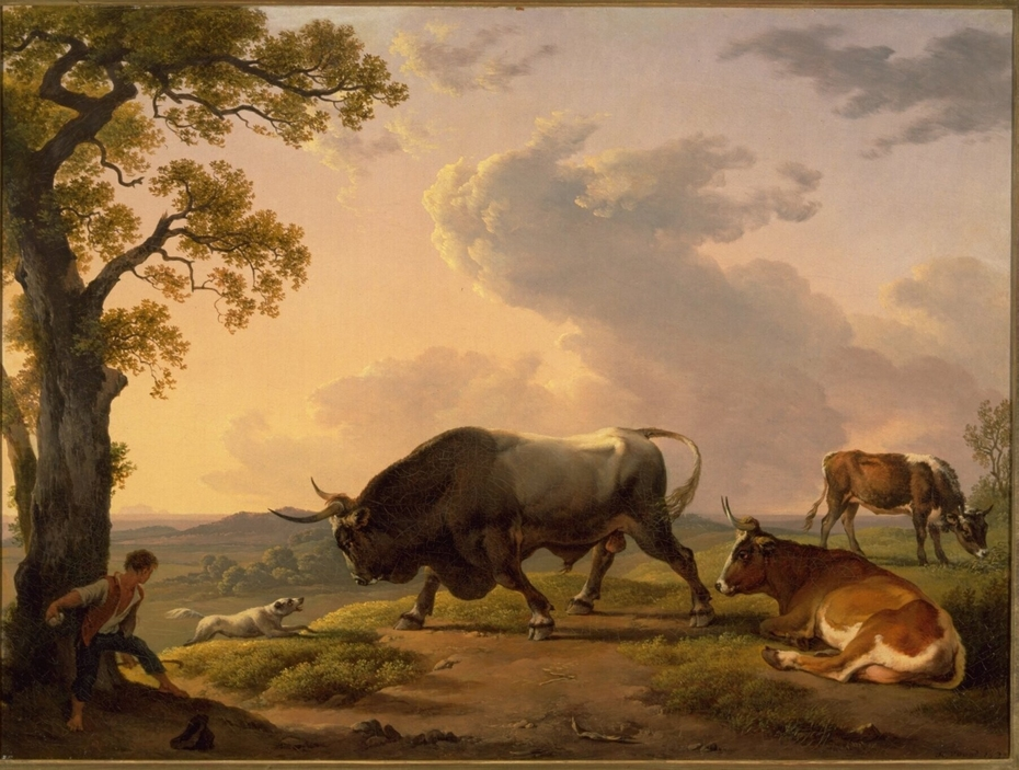A bull attacked by a dog in an Italian landscape
