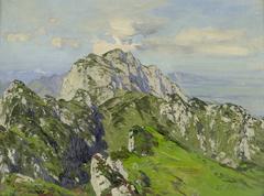Blick auf die Benediktenwand von Süden