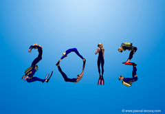 Carte de Voeux 2013 - Greetings card 2013 -  by Pascal