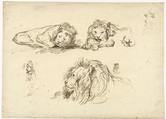 Drie schetsen van een leeuw en een man met een mijter op