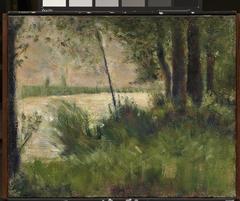 Grassy Riverbank