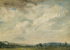 Harnham Ridge, near Salisbury