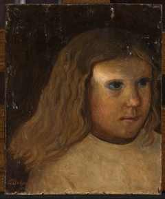 Head of a little girl with unloosed hair