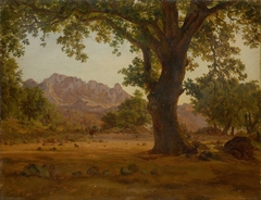 Oak Tree in a Mountainous Landscape