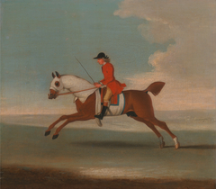 One of Four Portraits of Horses - a Chestnut Racehorse Exercised by a Trainer in a Red Coat: galloping to the left, the horse wearing white sweat covers on head, neck and body
