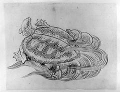 Sea Turtle (Emblem of Longevity)