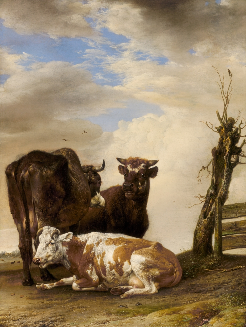 Two Cows and a Young Bull beside a Fence in a Meadow