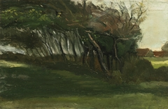 Landscape with Windswept Trees