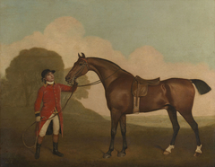 A Bay Horse with a Groom