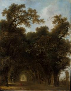 A Shaded Avenue