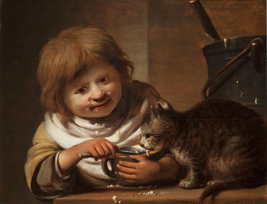 Boy feeding his Cat