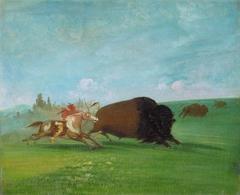 Buffalo Chase, a Single Death