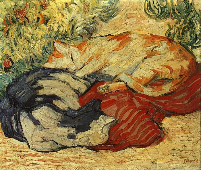 Cats on a red cloth