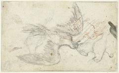 Drie schetsen van een vogel