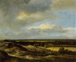 Dunes and bleaching fields
