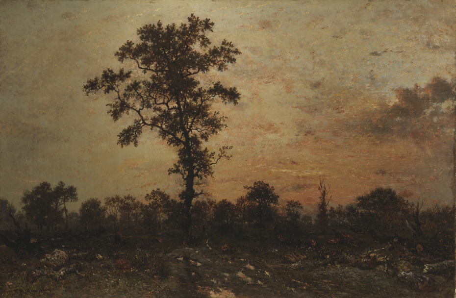 Edge of the Forest, Sun Setting