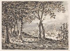 Gezicht door bomen op een dorp
