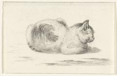 Liggende kat, naar rechts