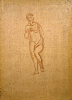Outline of a Venus Pudica