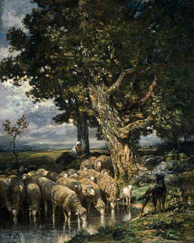 Sheep at a Watering Place