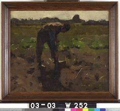 Spittende boer op het land Ewijkshoeve