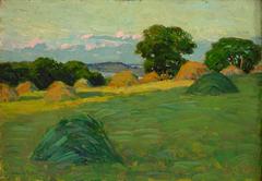 The Hill Field