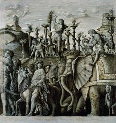 The Triumphs of Caesar: Elephants
