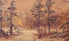 Winter - Woodland