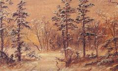 Winter - Woodland