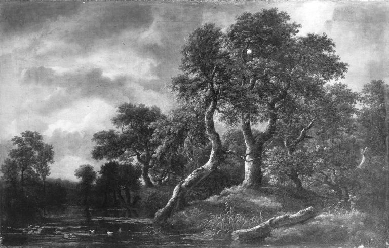 Wooded Landscape with Marsh