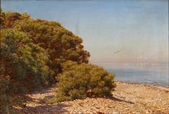 A sunny coastal scenery.