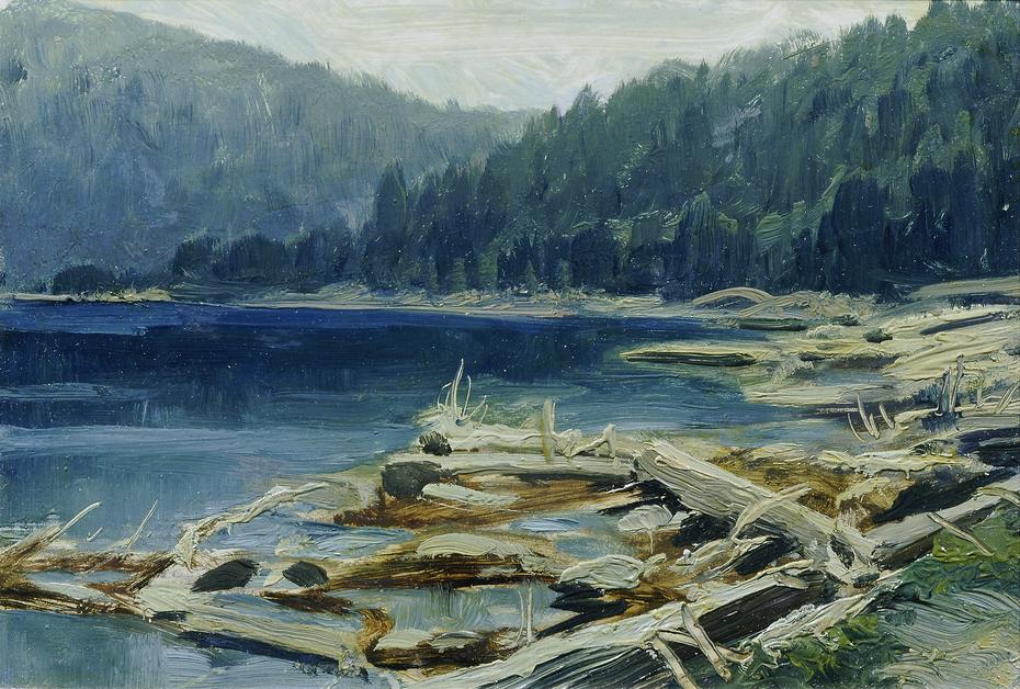 """Böhmerwald (aus der Mappe """"16 Ansichten tschechischer Landschaften 'Česka Krajiná'"""")"""