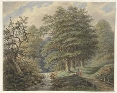 Boslandschap met watervalletje