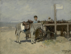 Donkey Stand on the Beach at Scheveningen