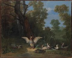 Ducks Resting in Sunshine