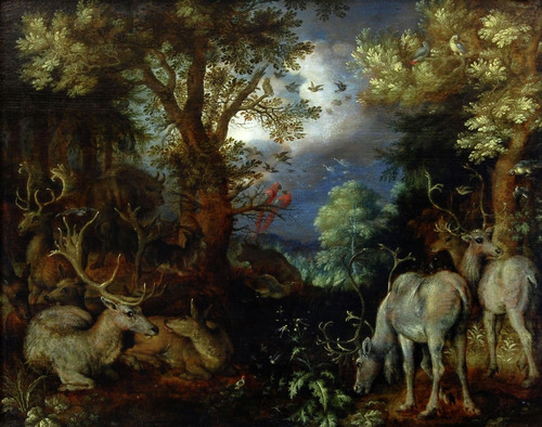 Herten in een bosrijk landschap