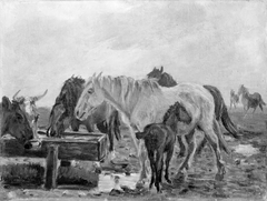 Horses at a Watering Trough