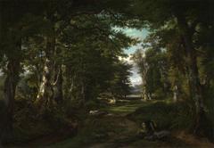 La forêt de Meudon près de Sèvres